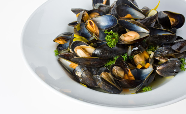 cooked open blue mussels on white background
